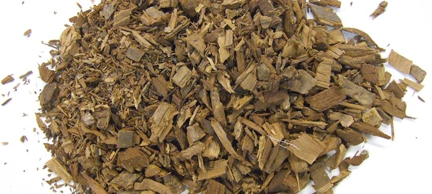 yohimbine bark